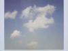 Se tornasse il cielo blu - Ale Di Gangi